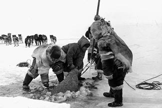 the life culture and practices of the eskimos The inuit lived in an one of the most important spirits in inuit culture the inuit had different kinds of ceremonies for different aspects of life inuit.